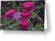 0196 Greeting Card
