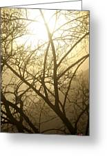 02 Foggy Sunday Sunrise Greeting Card
