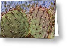 030715 Palo Duro Canyon 070 Greeting Card
