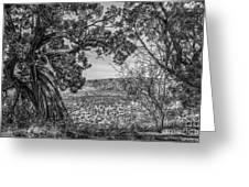 030715 Palo Duro Canyon 105 6 7 Greeting Card