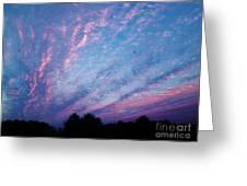 03262013021 Greeting Card