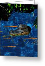 04142015 Gator Hole Greeting Card