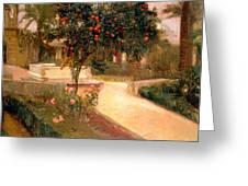Garden Alcazar Seville Greeting Card