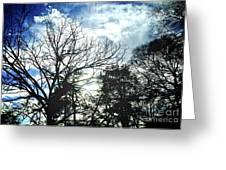 09032015039 Greeting Card
