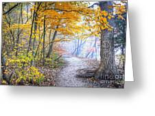 0982 Starved Rock Riverwalk Greeting Card