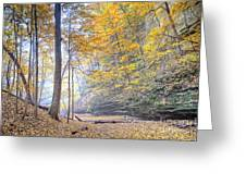 0983 Starved Rock Colors Greeting Card