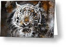 Tiger Collage On Color Abstract  Background  Rust Structure Wildlife Animals Greeting Card