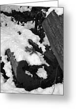 Snowy Wood  Greeting Card