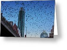 1.5 Million Mexican Free-tail Bats Overtake The Austin Skyline As They Exit The Congress Avenue Bridge Greeting Card