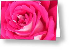 Bara Means Rose Greeting Card