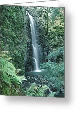 1b6351 Diamond A Waterfall Greeting Card