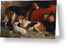 A Couple Of Foxhounds With A Terrier - The Property Of Lord Henry Bentinck  Greeting Card