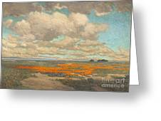 A Field Of California Poppies Greeting Card