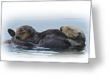A Mama Sea Otter And Her Babe Greeting Card