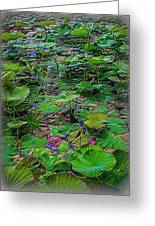 A Pretty Pond Full Of Lily Pads At A Water Temple In Bali. Greeting Card