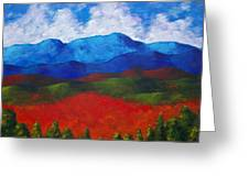A View Of The Blue Mountains Of The Adirondacks Greeting Card