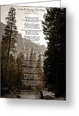 A Walk Among The Trees Greeting Card