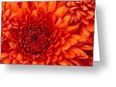 Abhishek Malani Greeting Card