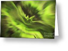 Abstract Aurora Greeting Card