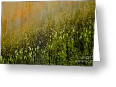 Abstract Spring Greeting Card