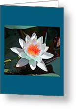 Abstract Waterlily Greeting Card