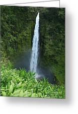 Akaka Falls Greeting Card