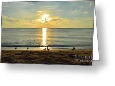Alas En El Sol Greeting Card