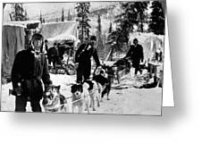 Alaskan Dog Sled, C1900 Greeting Card