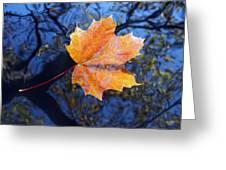 All About Autumn Greeting Card