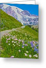 Alta Vista Trail In  Mount Rainier National Park, Washington  Greeting Card