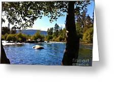 American River Through The Trees Greeting Card