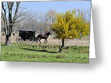 Amish Buggy Late Fall Greeting Card
