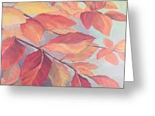 Among The Leaves Greeting Card