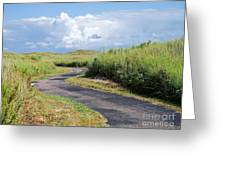 An Inviting Path Greeting Card