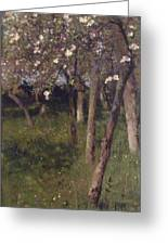 An Orchard Greeting Card