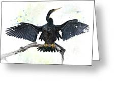 Anhinga Bird Greeting Card
