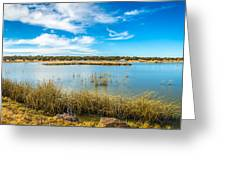 Arizona Riparian Preserve  #4 Greeting Card