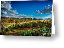 Arizona Sunrise 8 Greeting Card
