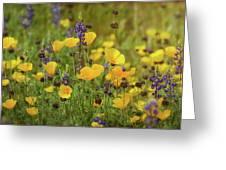 Arizona Wildflowers  Greeting Card