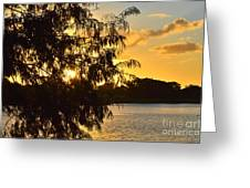 Atardecer En Hialeah Greeting Card