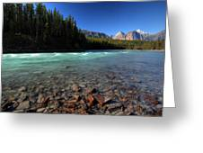 Athabasca River In Jasper National Park Greeting Card by Mark Duffy