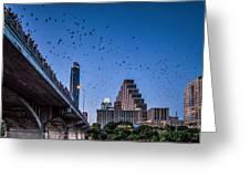 Austin Bat Watch Greeting Card