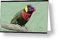 Australian Lorikeet Greeting Card