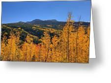 Autumn Bonfire Greeting Card