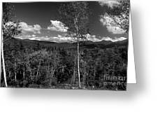 Autumn In The White Mountains Greeting Card