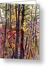 Autumn Leaves Greeting Card by Donald Maier