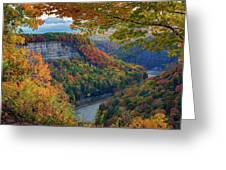 Autumn On The Genesee II Greeting Card