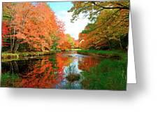 Autumn On The Mersey River, Kejimkujik National Park, Nova Scotia, Canada Greeting Card