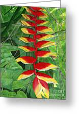 Balinese Heliconia Rostrata Greeting Card