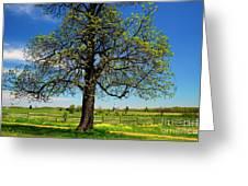 Battlefield Landscape Greeting Card